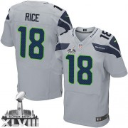 NFL Sidney Rice Seattle Seahawks Elite Alternate Super Bowl XLVIII Nike Jersey - Grey